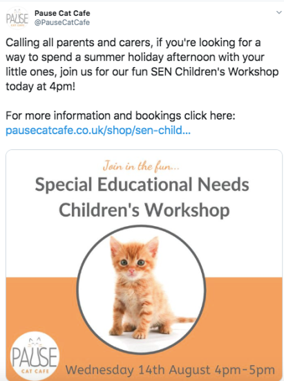 A tweet I posted about an upcoming SEN Children's event