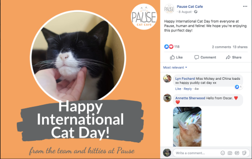 Facebook post about International Cat Day